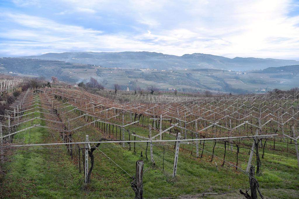 valpolicella-vino residence-ca-del-lago
