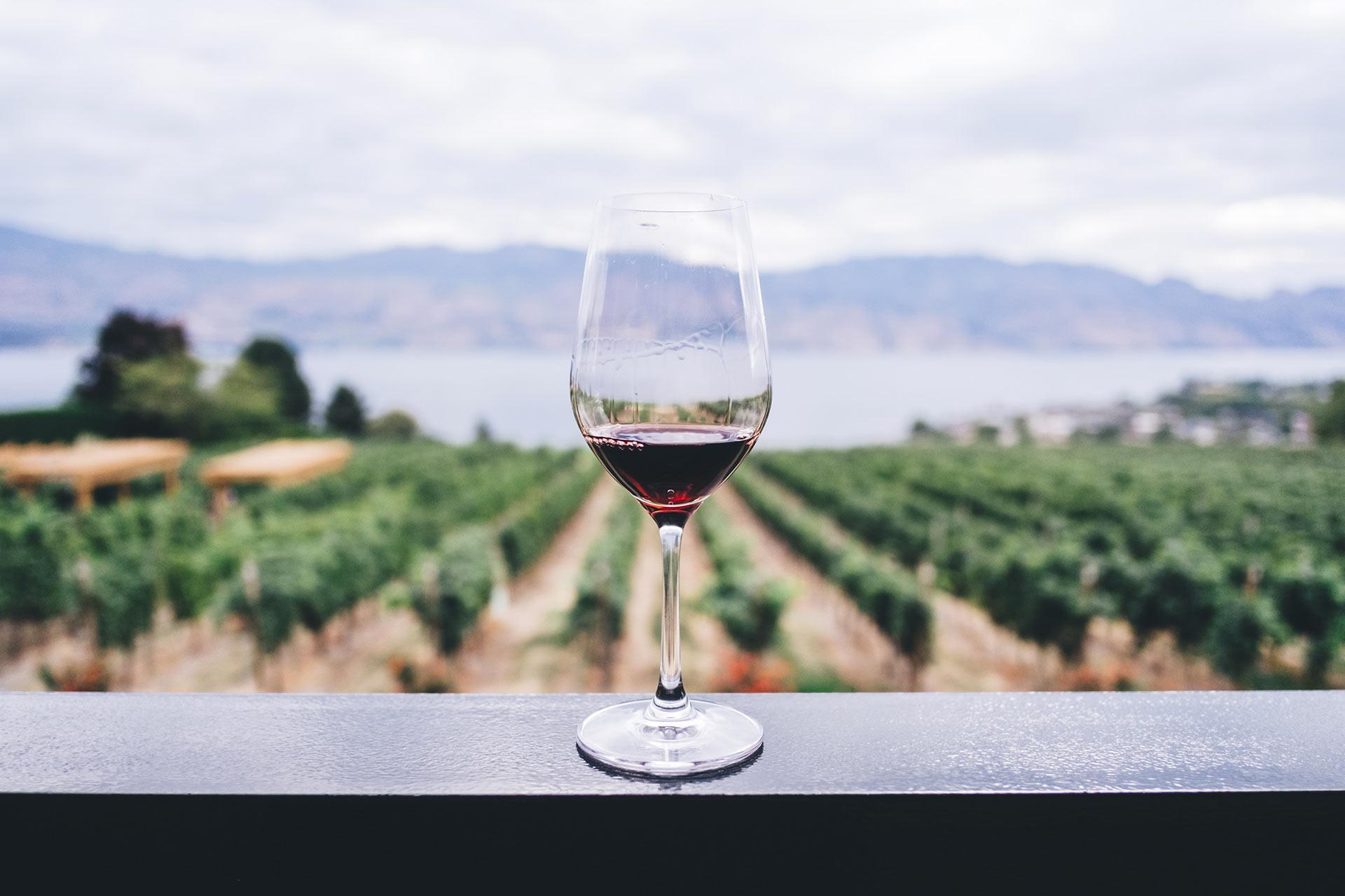 degustazione-vini-valpolicella_residence-ca-del-lago.jpg